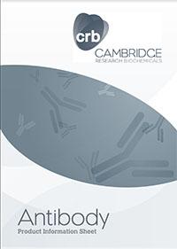 Antibody information sheet